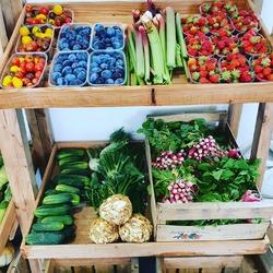 C'est reparti pour la boutique, beaucoup de fruits & légumes frais et locaux du jour, des fromages, des fleurs etc... Bref, on a hâte de vous retrouver en boutique !! 🤗🤗🐞🐞🐞🐞🐞Ecocinelle boutiqueEpicerie indépendante ouvert du mardi au vendredi : 10h-13h / 15h-19h etle samedi : 9h30-13h30 / 15h30-19h12 rue nationale 78940 LA QUEUE LEZ YVELINESTél :09 51 52 49 48----Parking à 20 mètres------N'hésitez pas à liker, partager, commenter et donner votre avis sur google pour nous soutenir !------ #local #vrac #locavore #vracindependant #zerodechet #epicerieindependante #ecoresponsable #zerowaste #antigaspi #yvelines #produitslocaux #produiteniledefrance #laqueuelezyvelines #galluis #montfortlamaury #garancieres #ecocinelle
