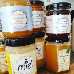 """Encore du bon miel et une super rencontre avec Romain, apiculteur de @un_domaine_pour_une_reine (78) Au menu : Du miel de châtaignier, de printemps et un """"millésime"""" pour ce miel récolté, extrait et mis en pots de manière artisanale sur le domaine du château de Millemont, dans les Yvelines (et juste à côté de la boutique 😉) Ce qui nous fait une belle gamme de miel locale pour tous les goûts avec Benoit @lerucherdulys et Anais @au_rucher_de_gambais #miel #vivelesabeilles #abeilles #mielfrancais #rucher #apiculture #apiculteur #savethebees #undomainepourunereine #aurucherdegambais #lerucherdulys #ecocinelle #produitslocaux #produitsenyvelines"""